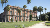 Private Tour: Capodimonte Museum in Naples, Naples, null