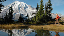 Mt Rainier Small-Group Tour with Lunch, Seattle, Day Trips