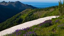 Private Tour: Olympic National Park Day Trip from Seattle, Seattle, Private Sightseeing Tours