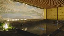 Thermae-Yu Hotspring in Shinjuku, Tokyo, Day Spas