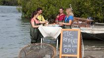 Crab Pot To Plate: Tweed River Cruise including Lunch, Tweed Heads, Day Cruises