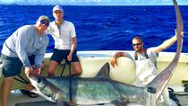 Private Shark Sportfishing Charter, Fort Lauderdale, Fishing Charters & Tours