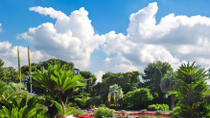 Monaco Shore Excursion: Small-Group Art Tour to the Villa Ephrussi de Rothschild, Chagall Museum and Matisse Museum
