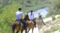 Mallorca Evening Tour: Horseback Riding, Dinner and Dance, Mallorca, Lunch Cruises