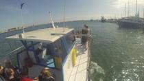 Palma de Mallorca Bay Boat Trip, Mallorca, Day Cruises