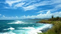 Private Tour: Kauai Sightseeing Adventure with Picnic Lunch, Kauai, Surfing Lessons