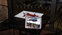 The Great Mystery Augmented Reality Mini-Game, Austin, Private Sightseeing Tours