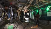 El Calafate History Museum Tour, El Calafate, Cultural Tours