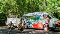 Cape Tribulation Tour, Cairns & the Tropical North, Day Trips