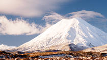Exclusive Mt Ngauruhoe Guided Walk, Tongariro National Park, Walking Tours
