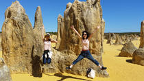 Full-Day Tour to Pinnacles Desert and Yanchep National Park from Perth, Perth, Day Trips