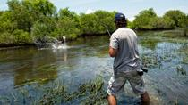 One Day Outback Fishing Experience via Helicopter, Brisbane, Helicopter Tours