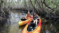 Mangrove Tunnels and Manatees Tour, Naples, Kayaking & Canoeing