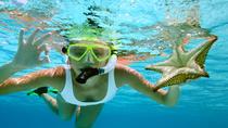 Roatan Shore Excursion: Snorkeling Tour