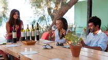 Santorini Private Wine Tour, Santorini, Wine Tasting & Winery Tours