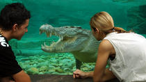 Cairns ZOOM e Wildlife Dome, Cairns & the Tropical North, Attraction Tickets