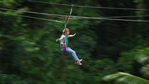 Daintree Rainforest Zipline and Wildlife Habitat Day Trip, Cairns & the Tropical North, Day ...