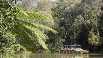 Kuranda Day Trip from Cairns by Scenic Railway and Skyrail Including Army Duck Rainforest Tour, ...