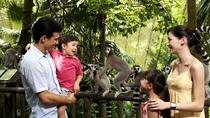 Singapore Zoo Day Trip with Japanese Guide, Singapore, Night Tours