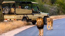 Kruger National Park 2Days&1night Tour from Johannesburg, Johannesburg, Overnight Tours