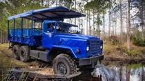 Excursion en buggy des marais et entrée au parc naturel Florida Wildlife, Orlando, 4WD, ATV & ...
