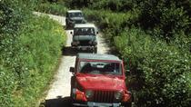 Ketchikan Super Saver: Off-Road Jeep and Canoe Safari Combo, Ketchikan, 4WD, ATV & Off-Road Tours
