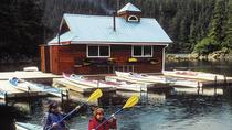 Sitka Sea Kayaking Adventure, Sitka, Dolphin & Whale Watching