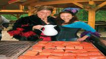 Skagway Salmon Bake at Historical Liarsville Camp