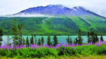 Yukon Sightseeing Adventure by Hummer, Skagway, 4WD, ATV & Off-Road Tours