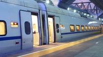 Private Arrival Transfer: Rome Train Station to Hotel, Rome, Airport & Ground Transfers