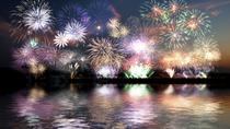 New Year's Eve Fireworks Cruise in Reykjavik, Reykjavik, Fishing Charters & Tours