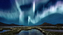Northern Lights Viewing Cruise from Reykjavik, Reykjavik, Dolphin & Whale Watching