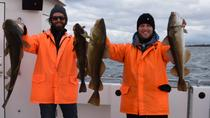 Sea-Fishing Tour from Reykjavik, Reykjavik, Night Cruises