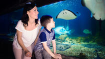 SEA LIFE Blankenberge Direct Entrance Ticket, Flanders, Attraction Tickets