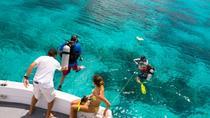 Bermuda 2-Tank Certified Scuba Dive, Bermuda, Scuba Diving