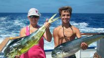 Full-Day Deep-Sea Fishing Cruise from Newport Beach, Anaheim & Buena Park, Dolphin & Whale ...
