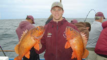 Half-Day Deep-Sea Fishing Cruise from Newport Beach, Los Angeles, Fishing Charters & Tours
