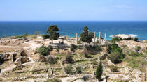 Private Tour: Byblos, Jeita Grotto and Harissa Day Trip from Beirut, Beirut