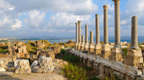 Private Tour: Tyre, Sidon and Maghdouche Day Trip from Beirut, Beirut, Private Sightseeing Tours