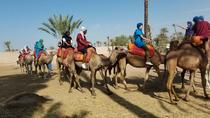 Camel Ride and Luxury Spa Treatment in Marrakech, Marrakech, Nature & Wildlife