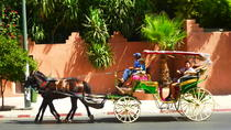 Horse Carriage Ride with Majorelle Garden, Marrakech, Horse Carriage Rides
