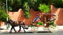 Horse Carriage Ride with Majorelle Garden, Marrakech, Horse Carriage Rides