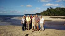 Full-Day Tour to Cahuita National Park from Puerto Limon, Limon, Full-day Tours