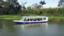 Full-Day Tour to Cahuita National Park from Puerto Limon