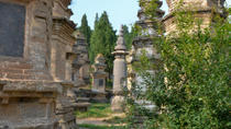 2-Day Luoyang Private Tour from Xi'an by High Speed Train