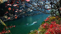 4-Day Century Sun Yangtze River Cruise Tour from Chongqing to Yichang, Chongqing, Multi-day Cruises