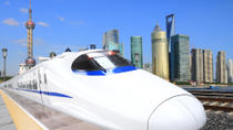 Private Arrival Transfer: Xi'an Railway Stations to Hotel, Sian
