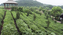 4-Day Hangzhou Private Tour: West Lake and Longjing Tea Plantation, Hangzhou
