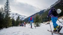 4 hours skitour trip in Tatra Mountains for beginners with renting equipment, Poland, 4WD, ATV &...
