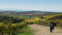 Private Tour: Guided Hike in Tuscany with Transport from Siena, Siena